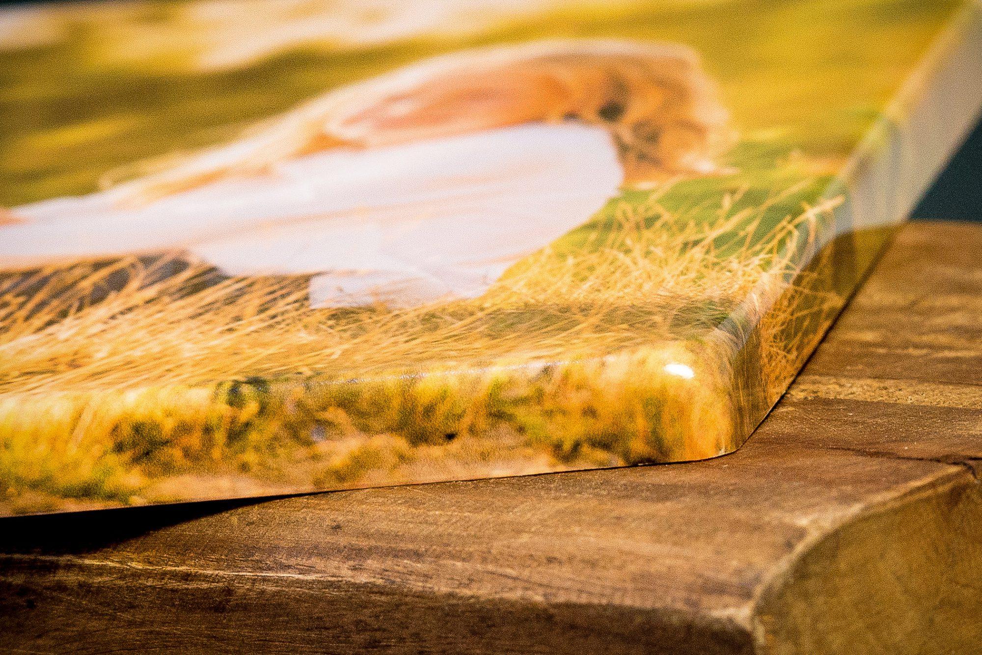 portretfotografie, groepsfoto, fotograaf, Wouter van Middendorp, omgeving Uddel, Elspeet, Garderen, Putten, Ermelo, Nieuw-Milligen, Vierhouten, Nunspeet, trouwfotografie, bruidsfotografie, Veluwe, Barneveld, Kesteren, Achterberg, professionele fotograaf, 3d aluminium
