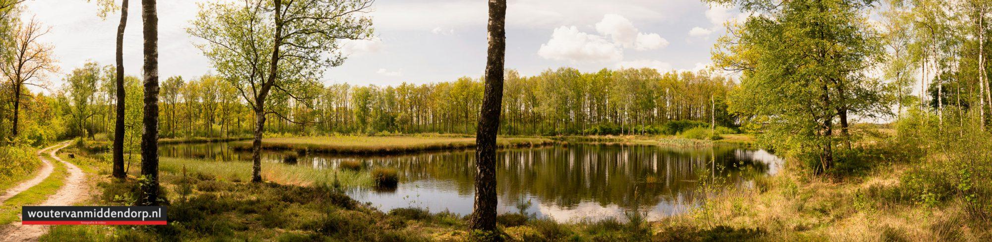 natuurfotografie-10