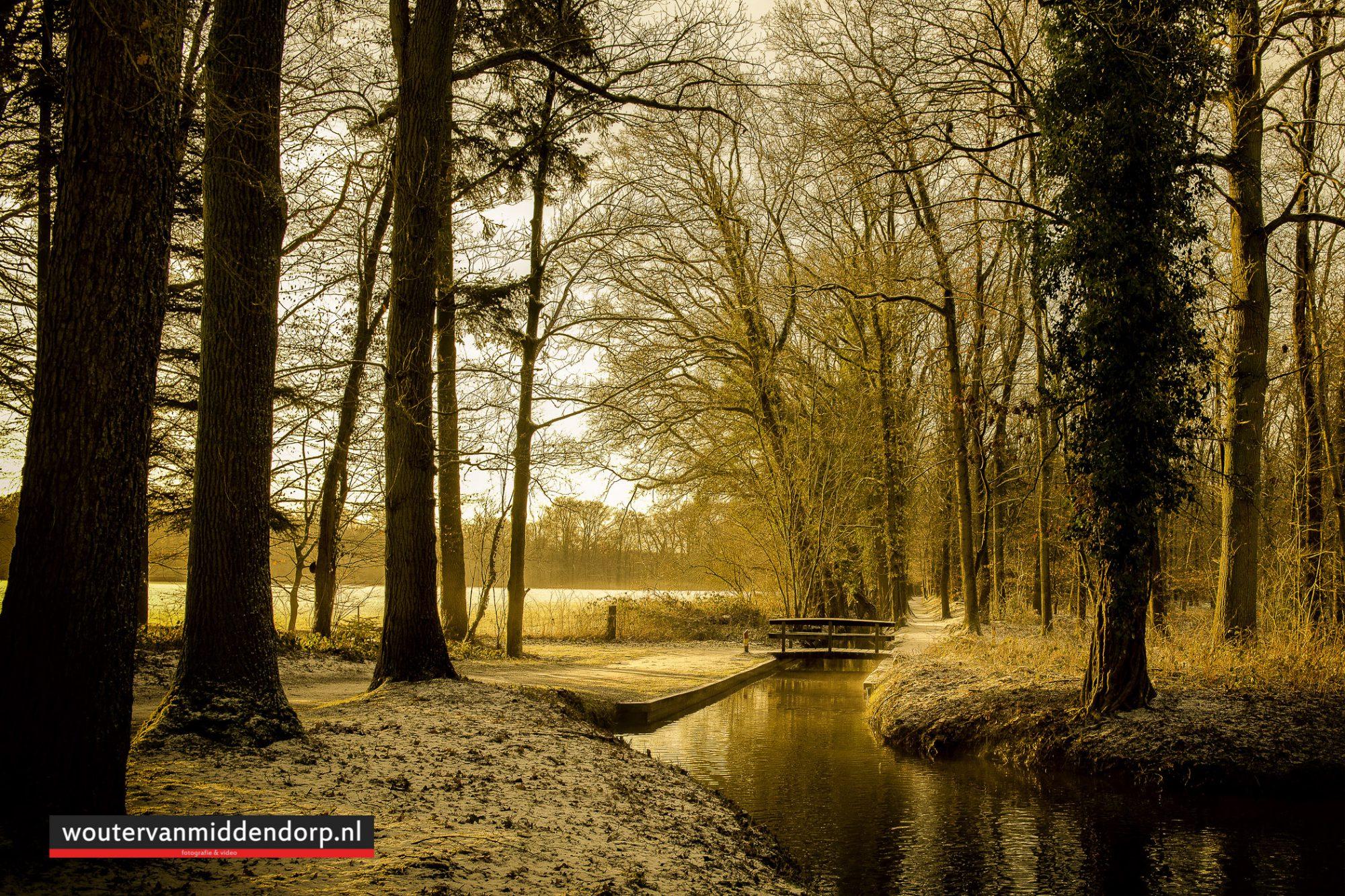 natuurfotografie-122