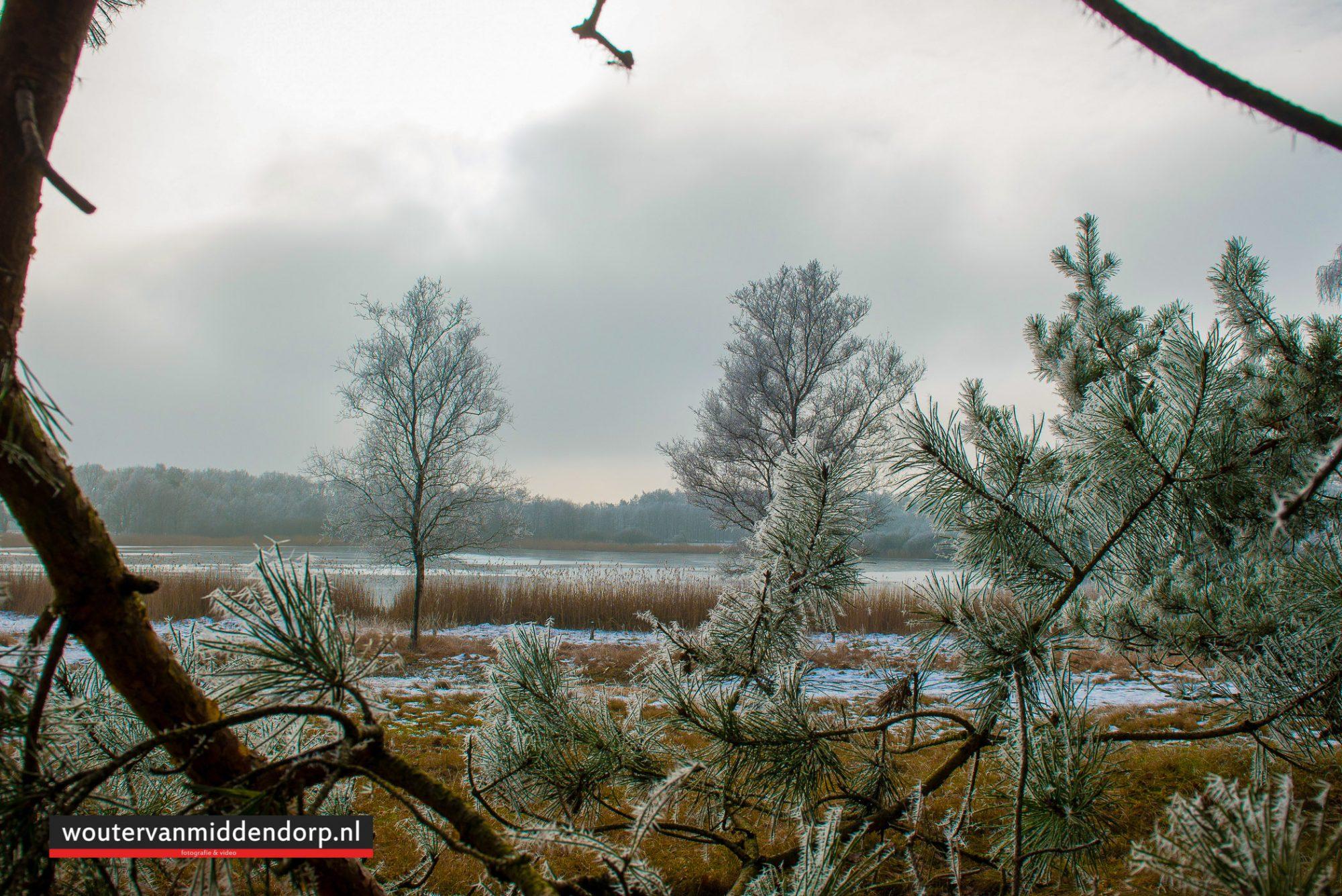 natuurfotografie-125