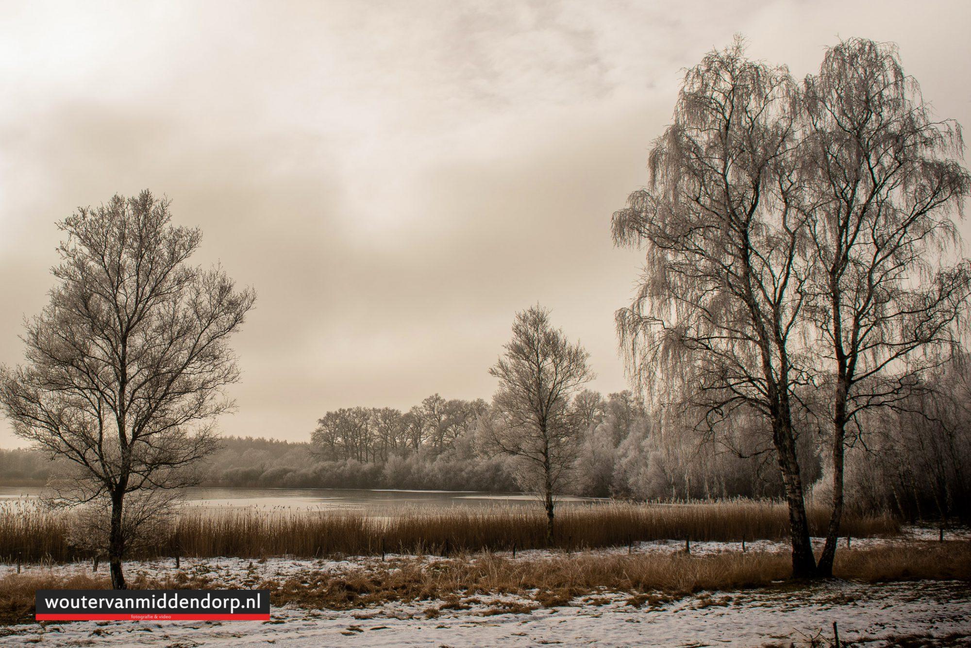 natuurfotografie-127