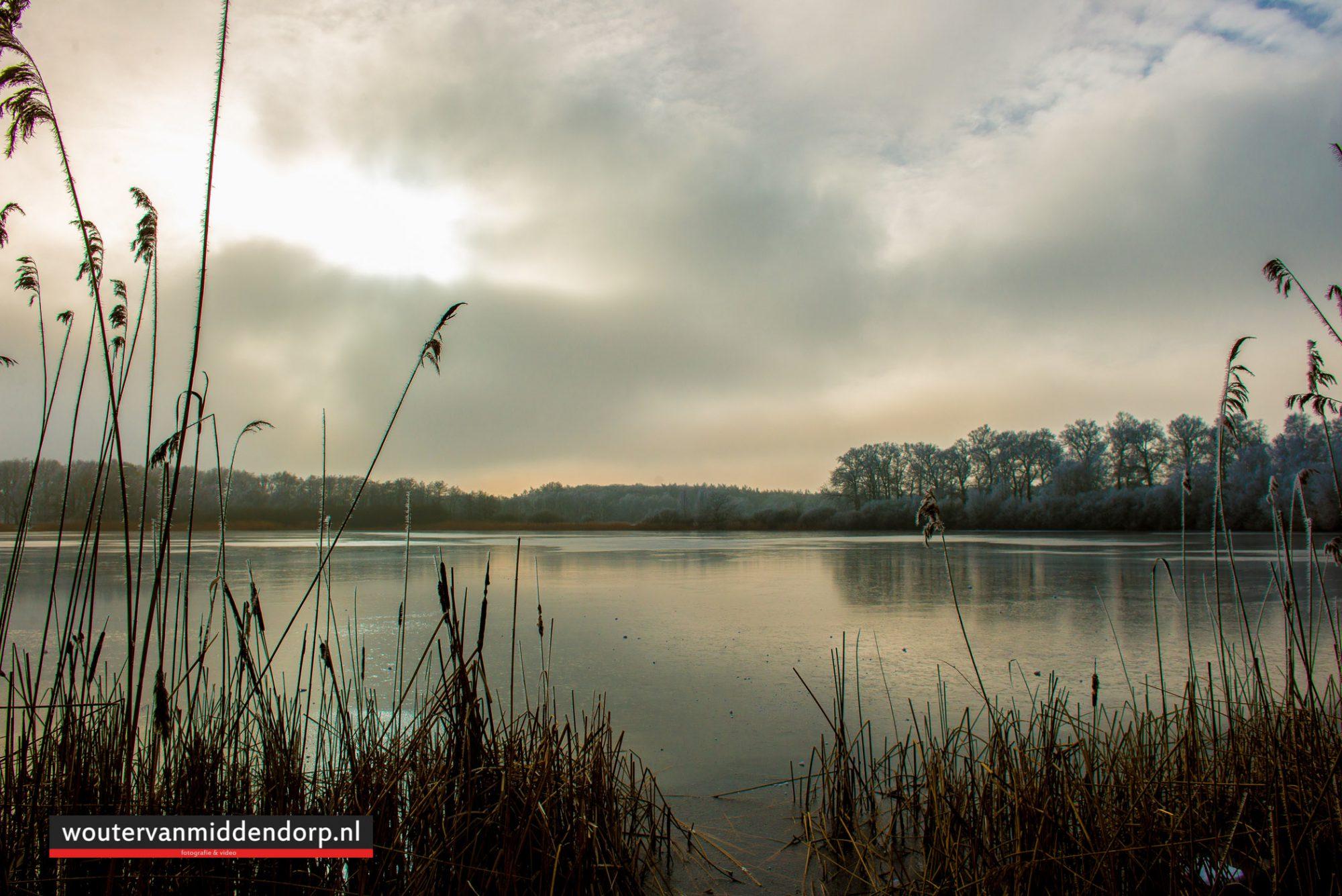 natuurfotografie-129