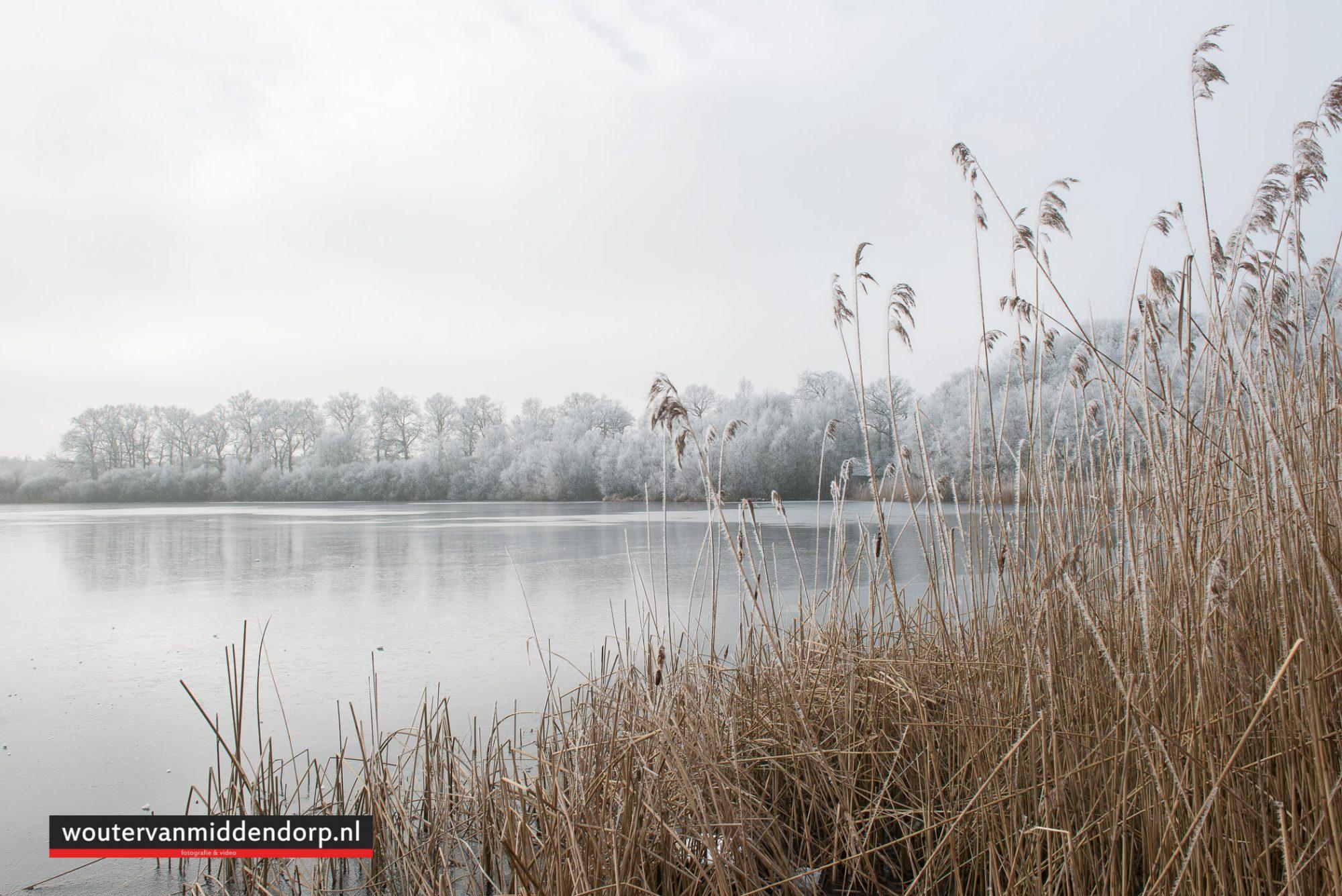 natuurfotografie-132