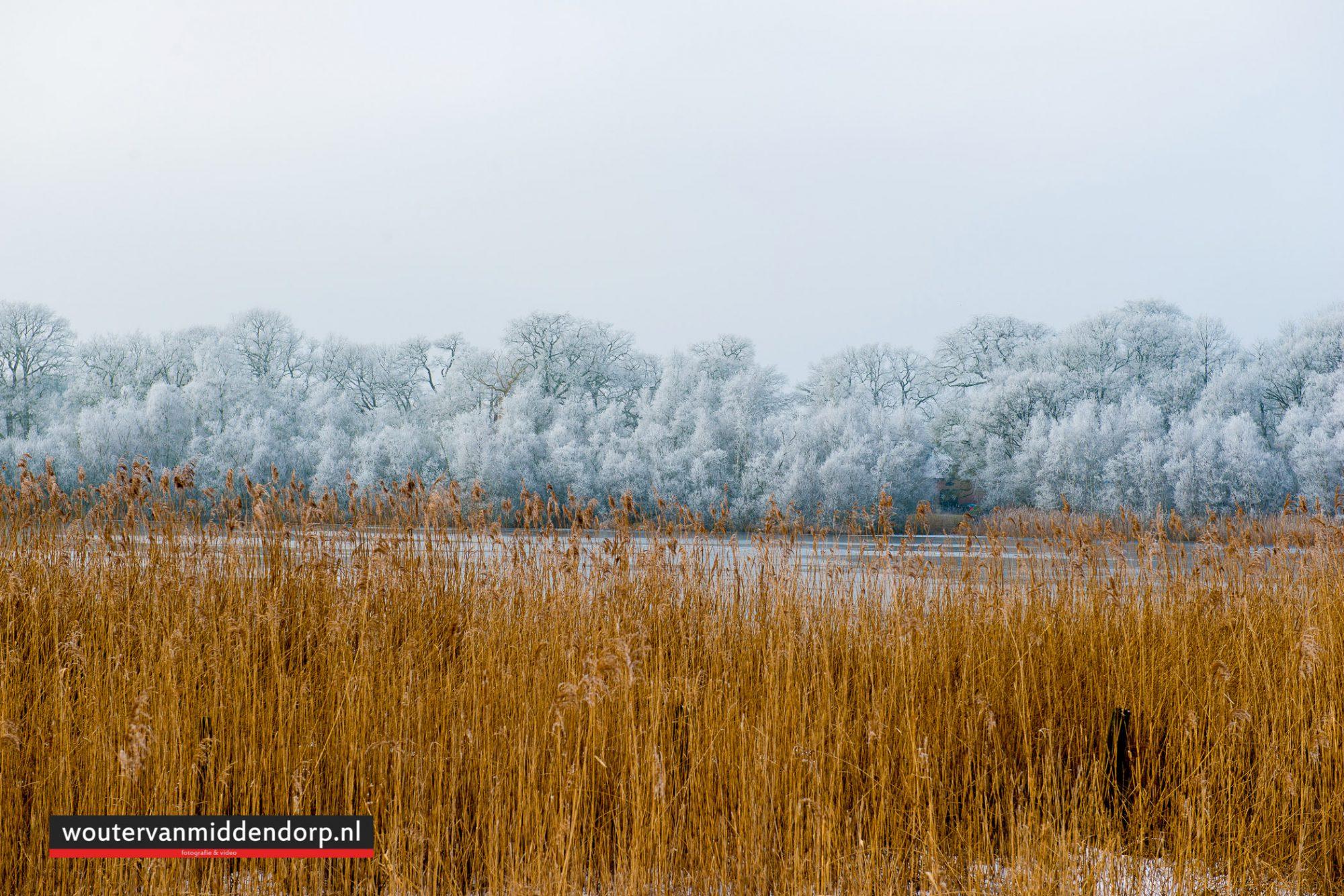 natuurfotografie-134
