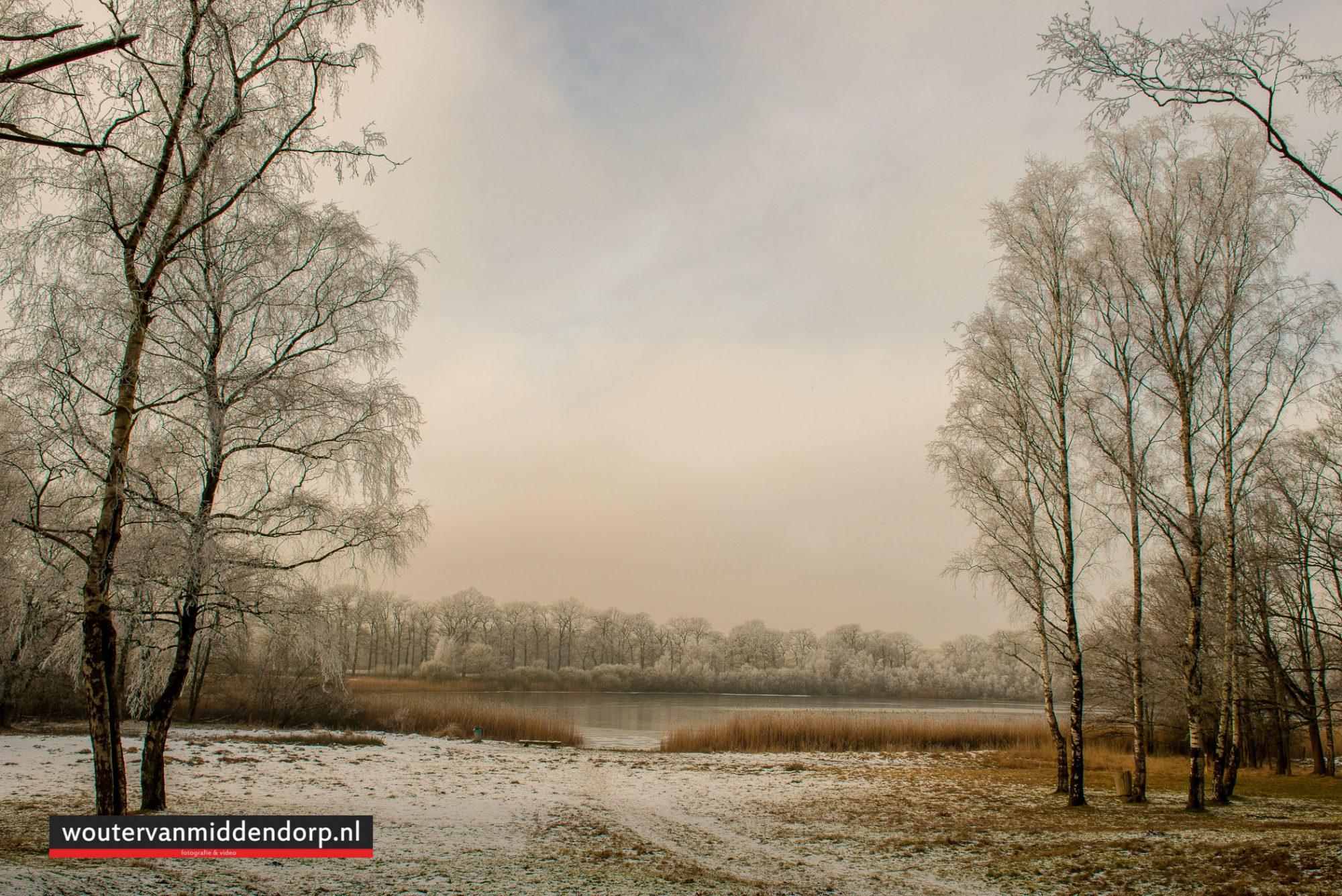 natuurfotografie-136