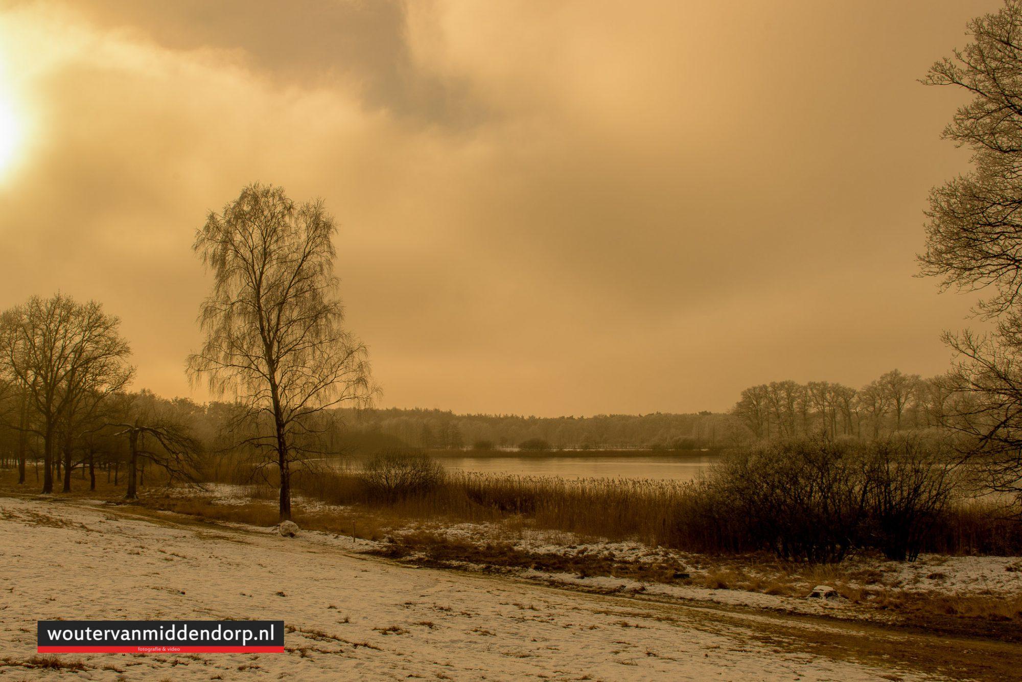 natuurfotografie-138