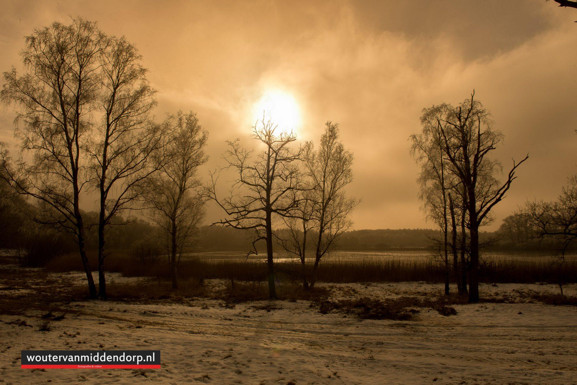 natuurfotografie-142