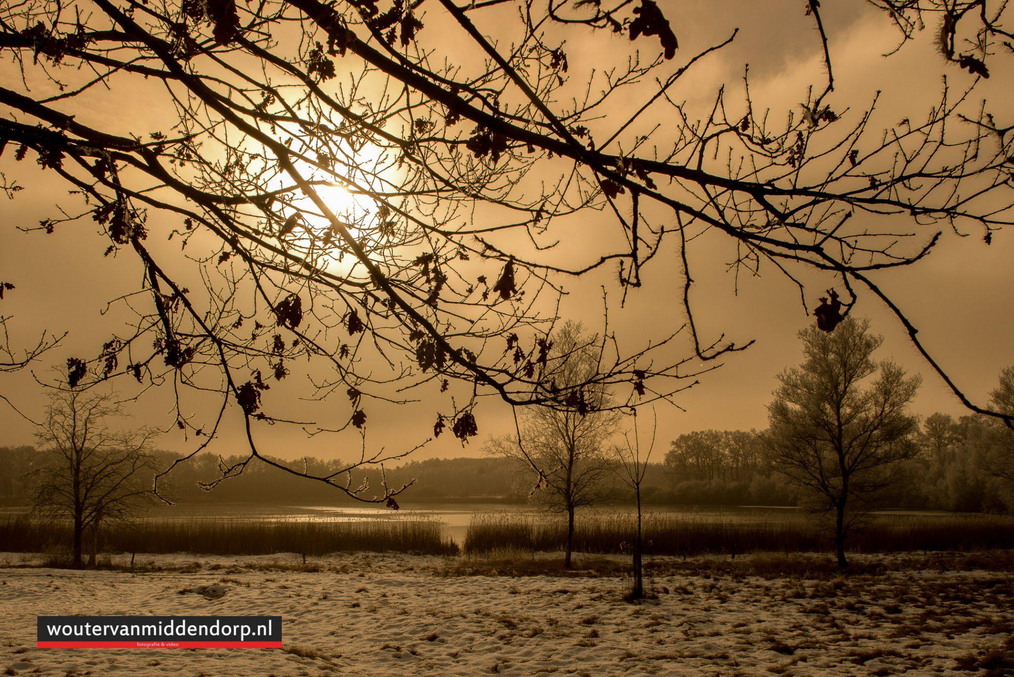 natuurfotografie-144