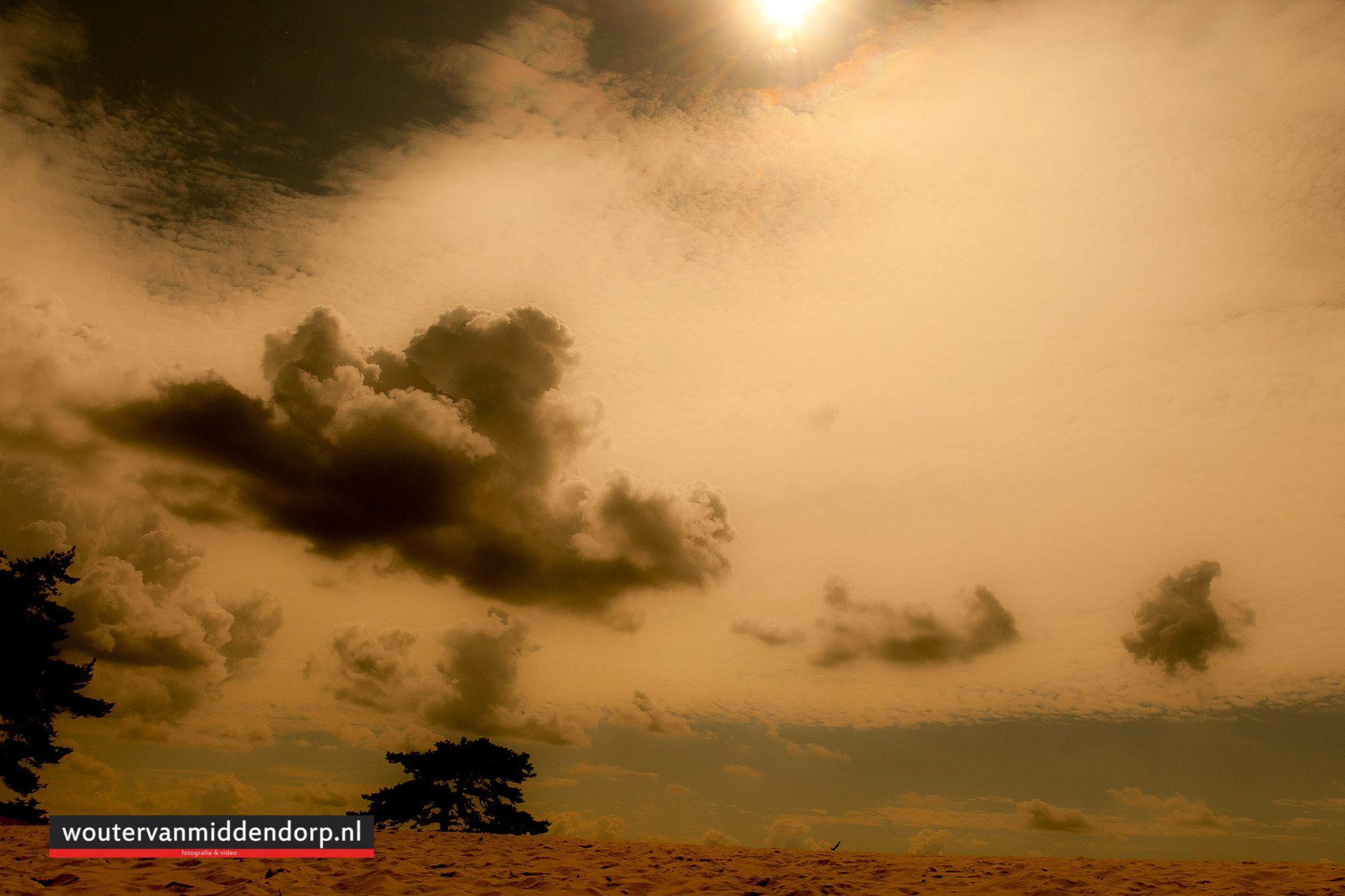 natuurfotografie-70