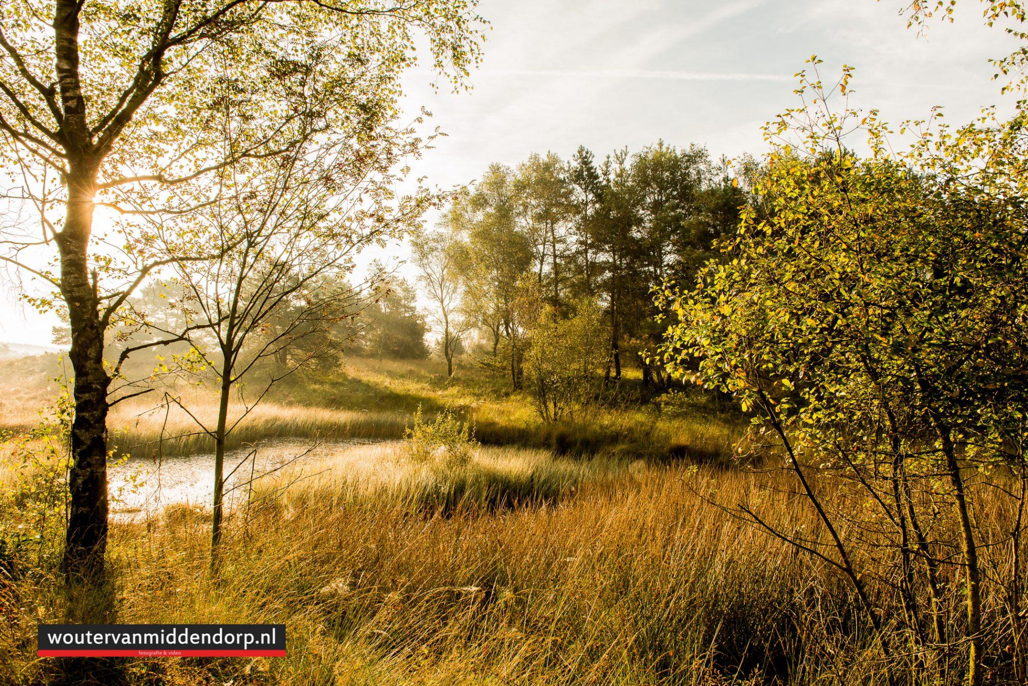 natuurfotografie-79