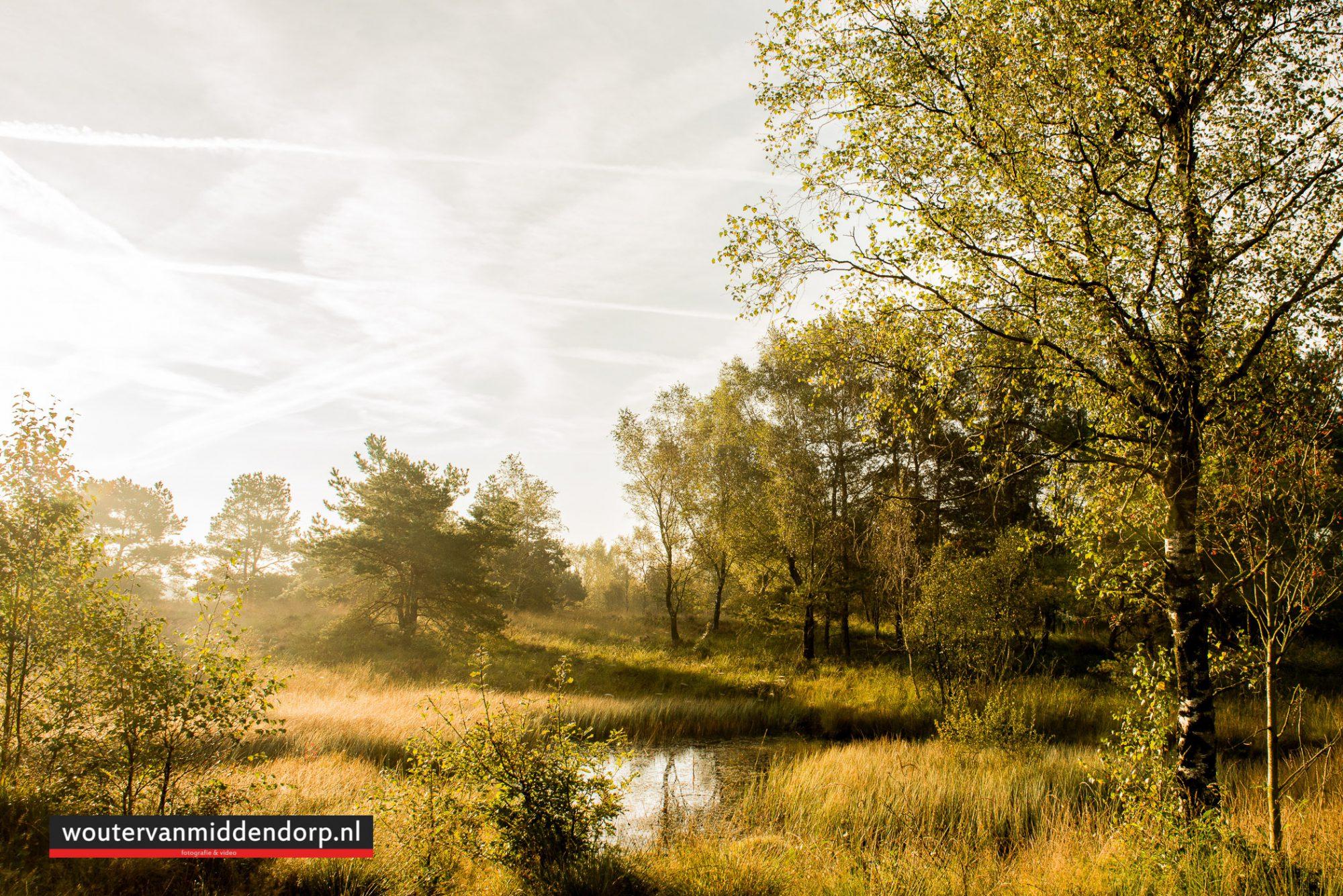 natuurfotografie-80