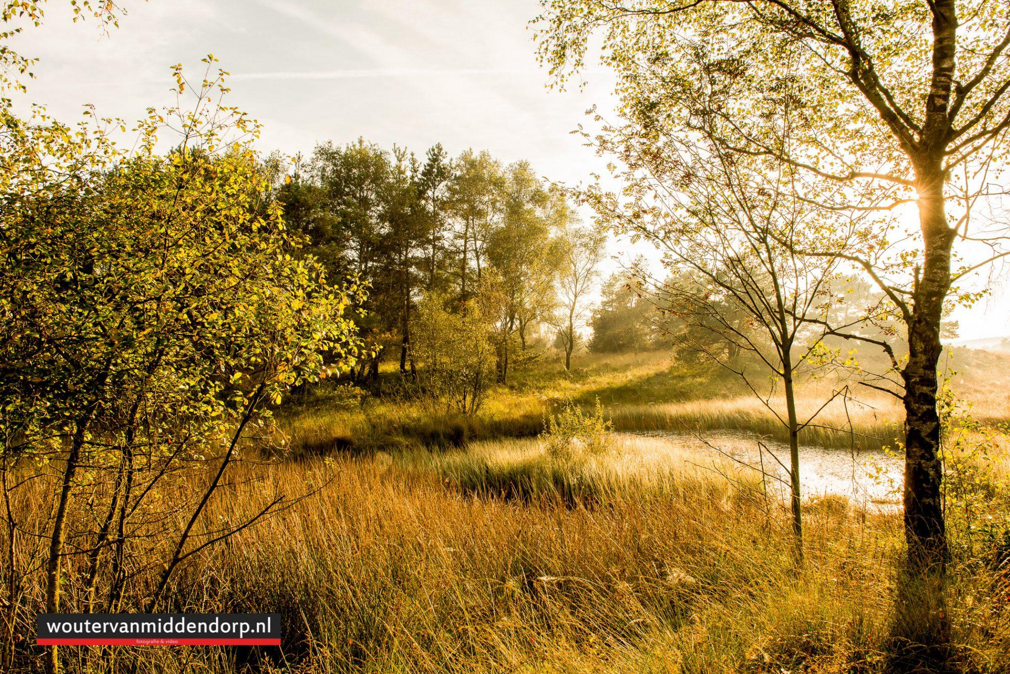 natuurfotografie-88