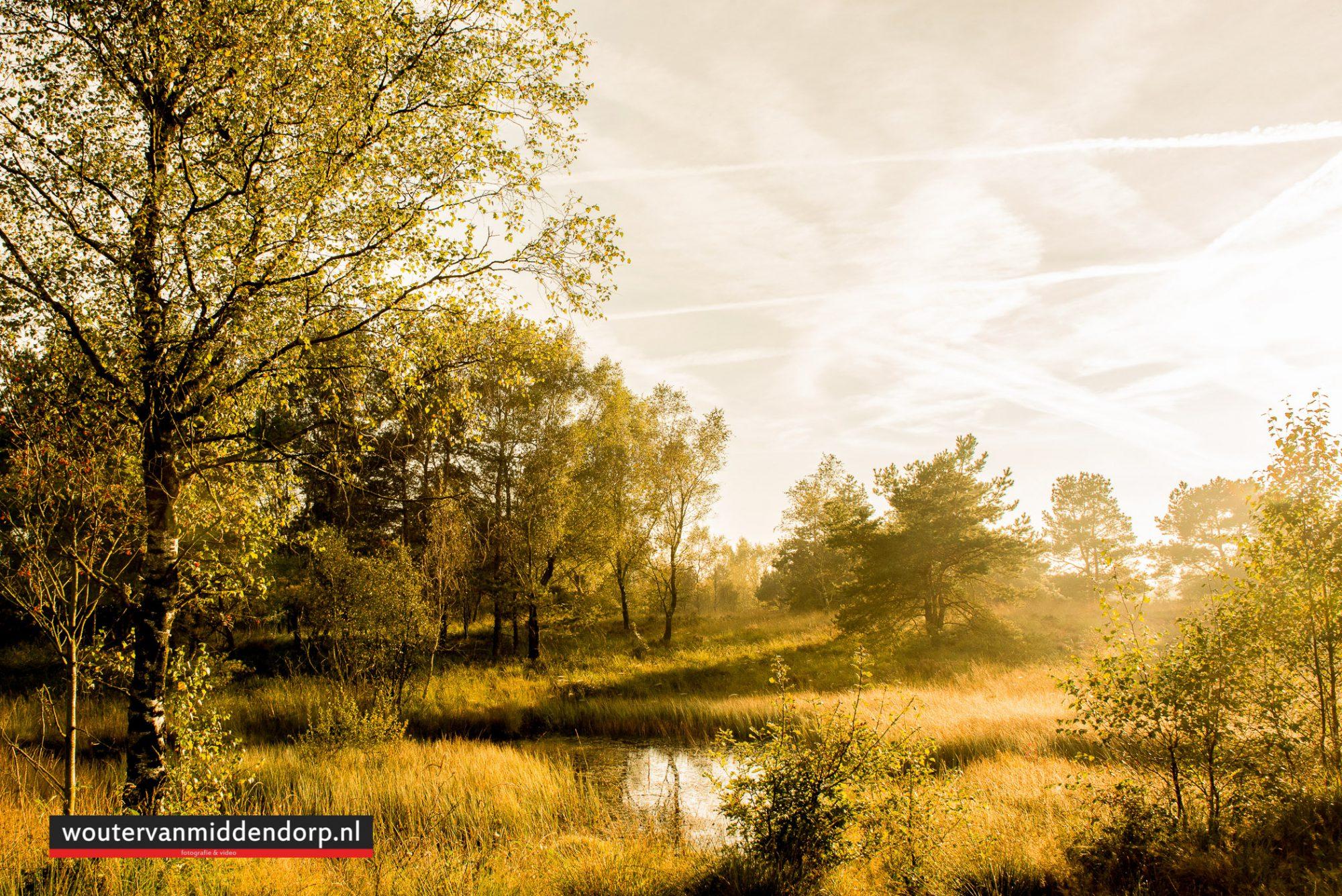 natuurfotografie-89