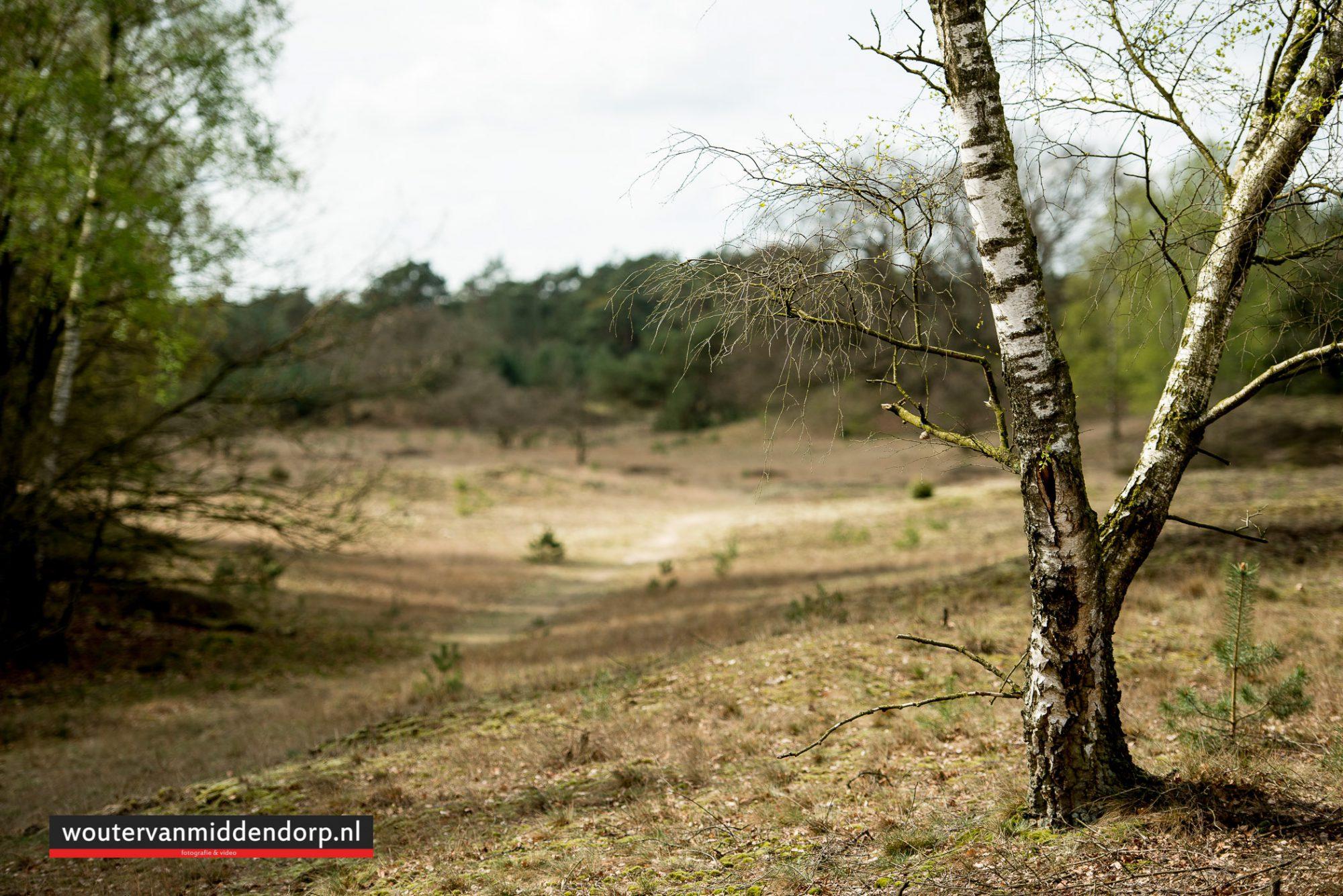natuurfotografie-99