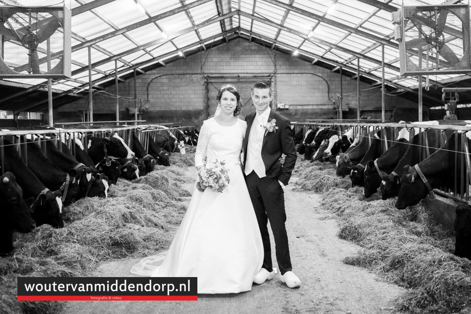 foto Wouter van Middendorp Uddel, Veluwe, Gelderland, trouwfotograaf (12)