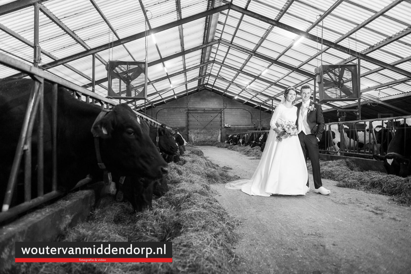 foto Wouter van Middendorp Uddel, Veluwe, Gelderland, trouwfotograaf (13)