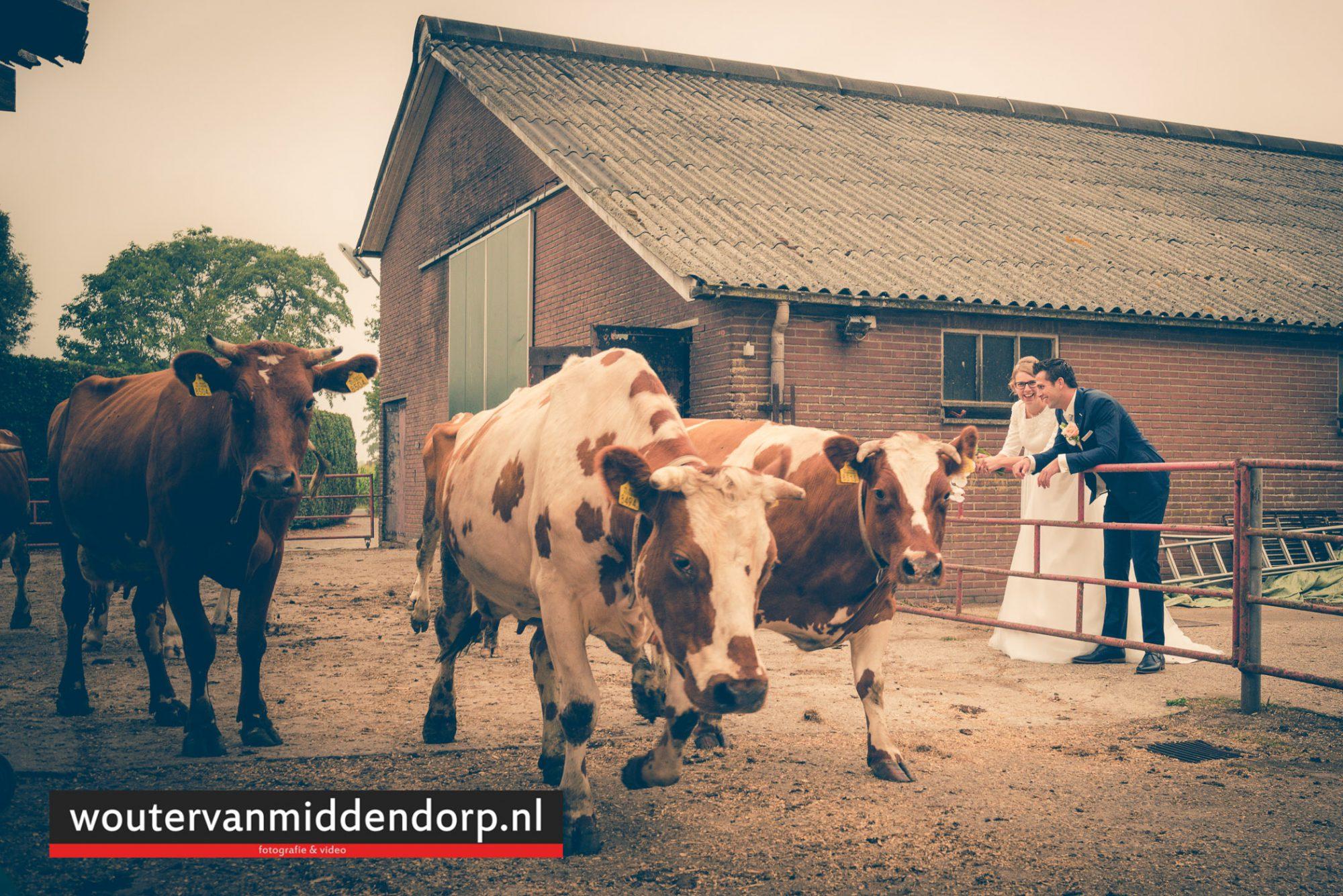 bruidsfotografie Wouter van Middendorp Uddel HArskamp Barneveld-16