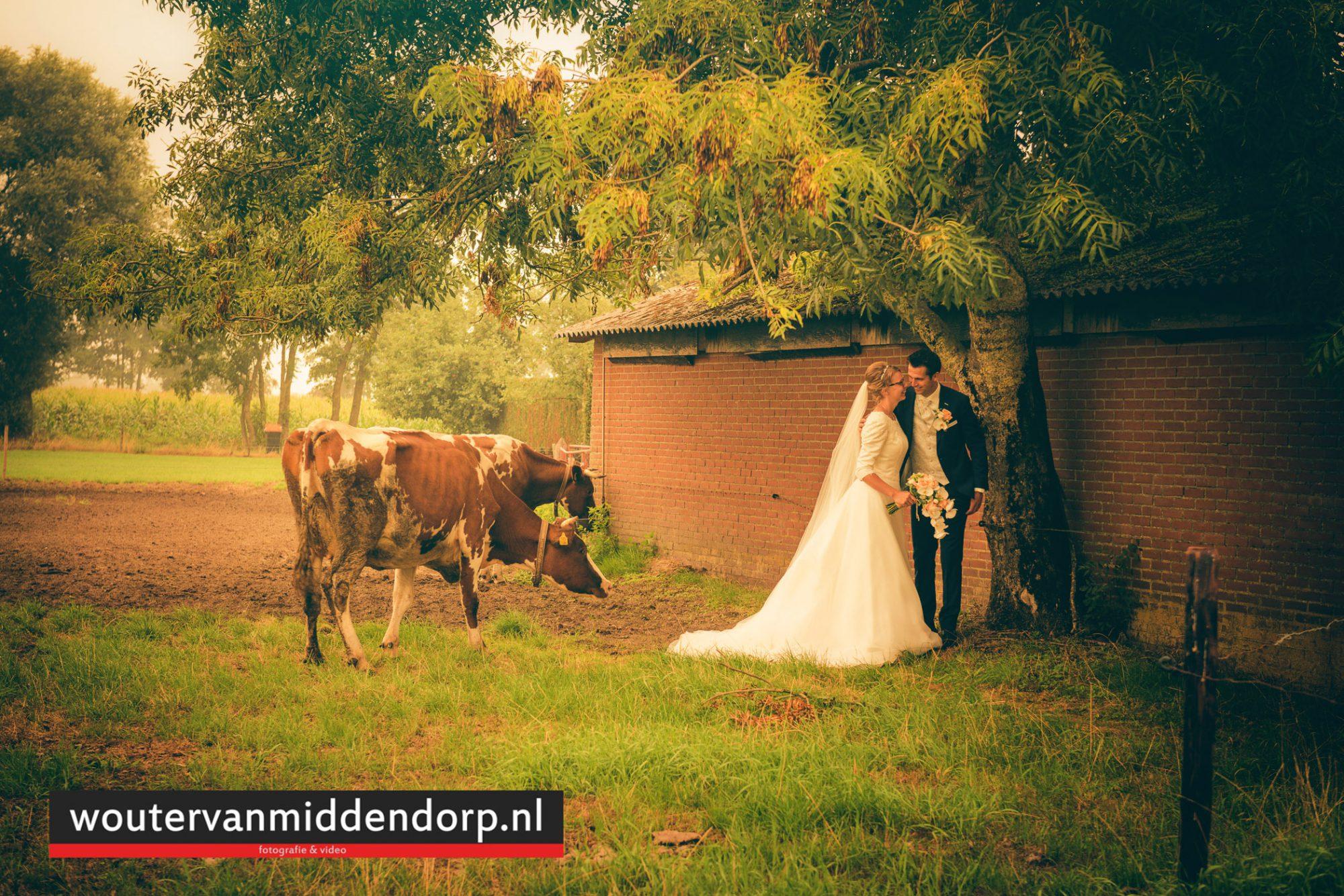 bruidsfotografie Wouter van Middendorp Uddel HArskamp Barneveld-17