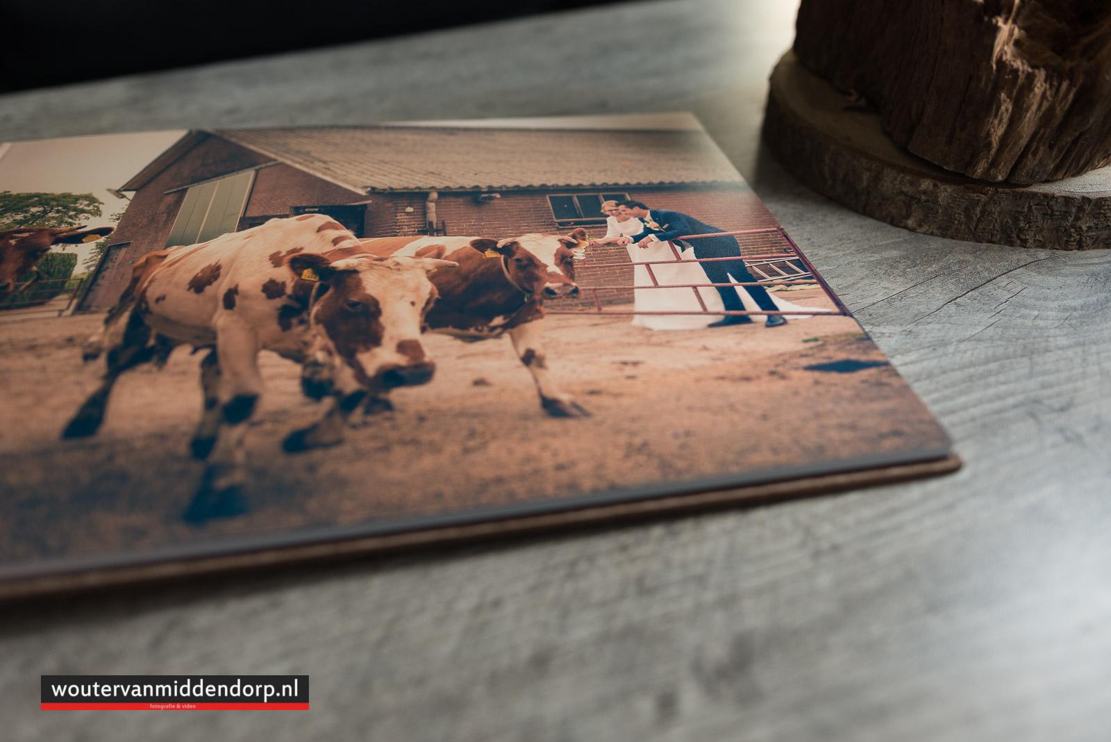trouwalbum, bruidsreportage, fotograaf Wouter van Middendorp Uddel-17