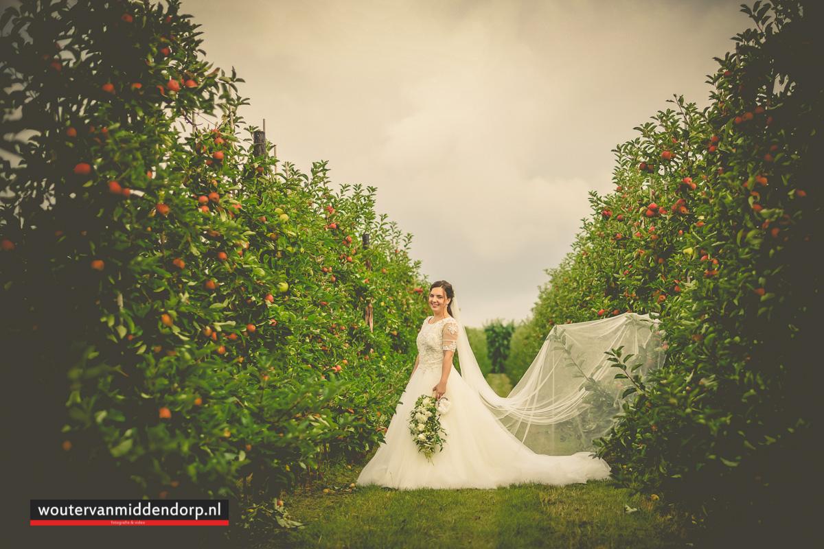 fotografie omgeving, Elspeet, Goes, Zeeland, Veluwe, bruidsfotograaf, Wouter van Middendorp (224)